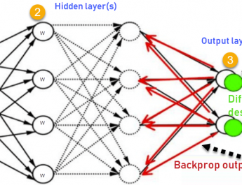 Basic Concepts in Deep Learning